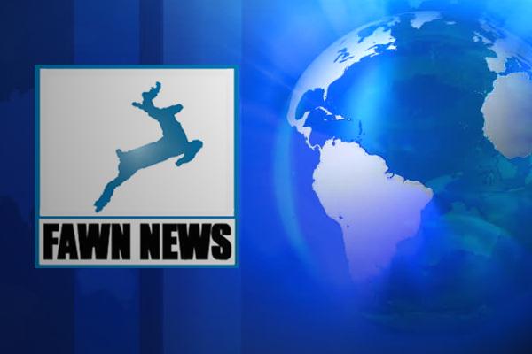 Fawn news