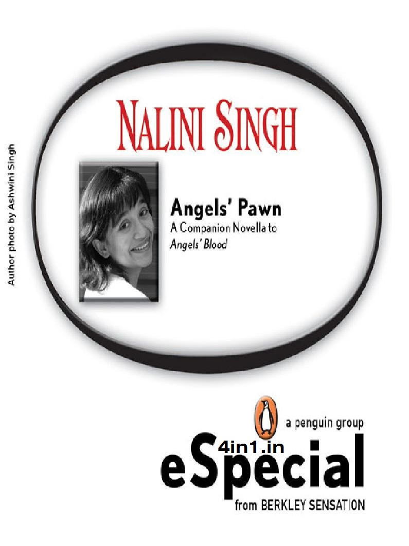 angels flight singh nalini